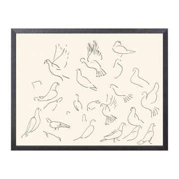 Picture of COLLECTION 12 CACHET, DOVES