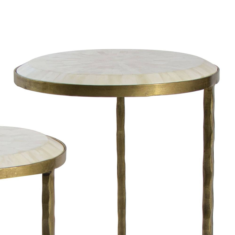 Picture of BONE VENEER NEST TABLE S/2 BRS